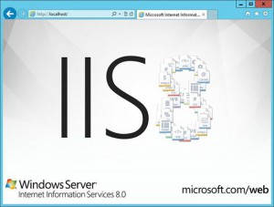 Быстрая настройка FTP в IIS 8 (Windows Server 2012)