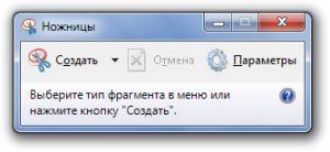 Как сделать скриншот (screenshot) в Windows