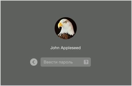 Значок пользователя с полем пароля под ним